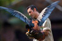 Vogelpark Bild
